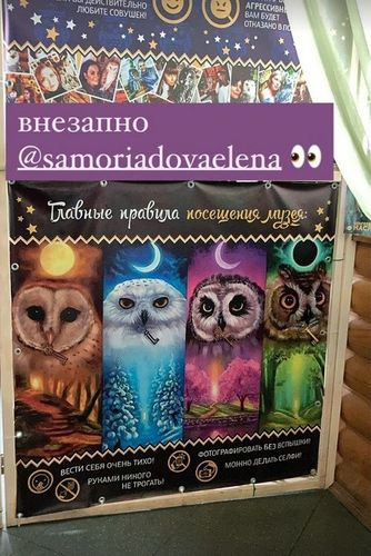 My art with owls in the museum.