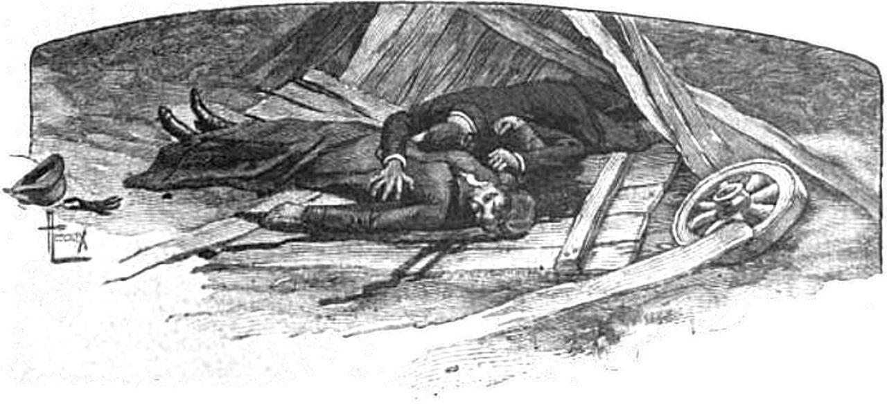 Une vie  pd 1883.jpg