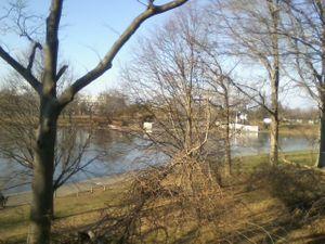 Park, Pond, Winter