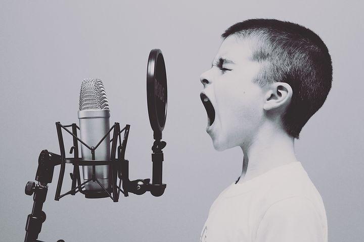 microphone-1209816__480.webp.jpg