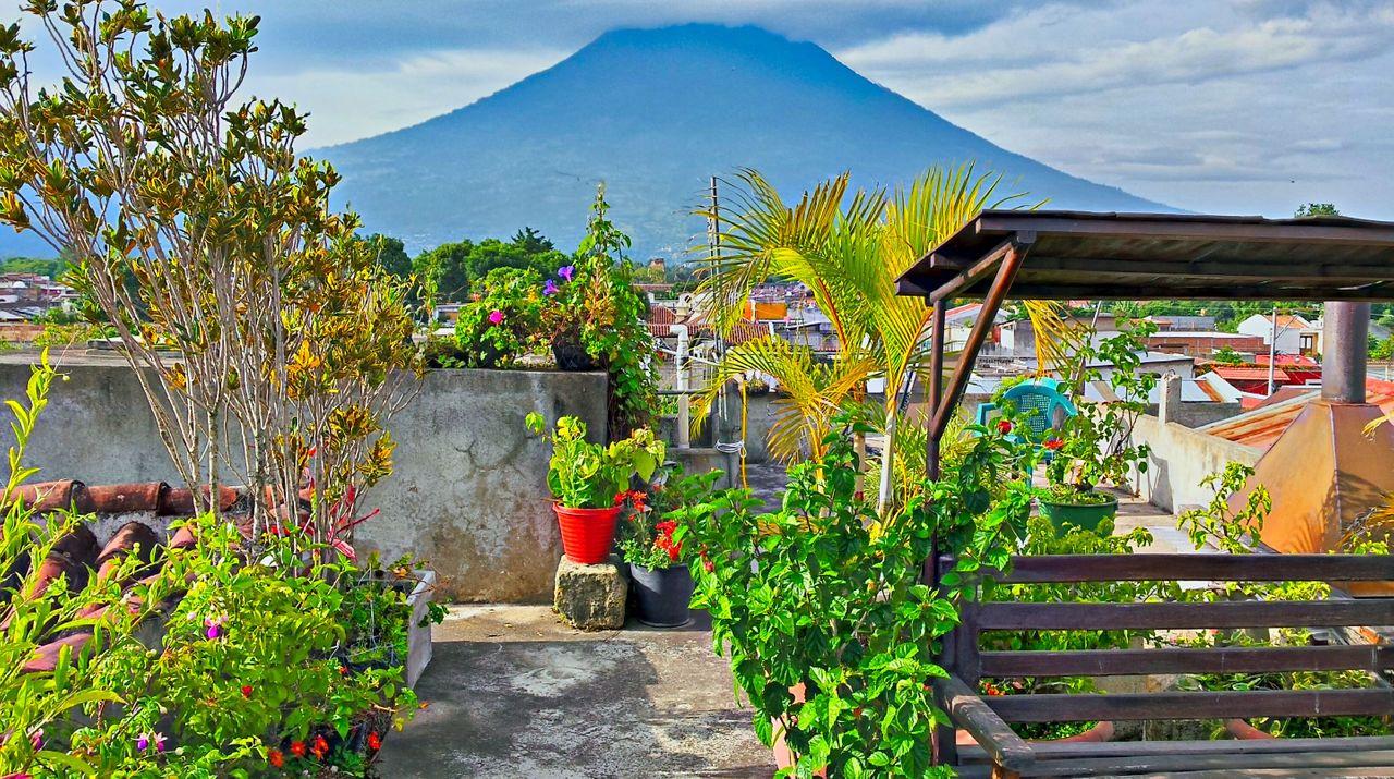 17 - Antigua.jpg