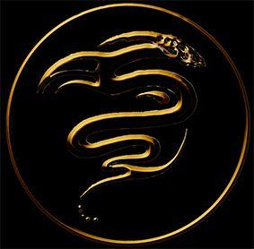 Snake_small logo on black.jpg