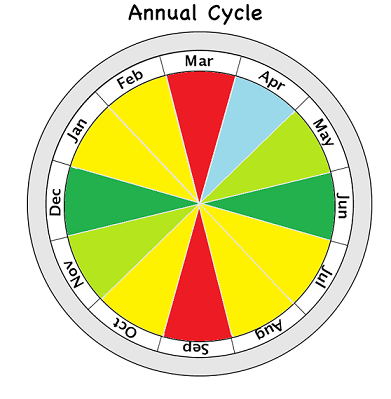 annual_cycle.png