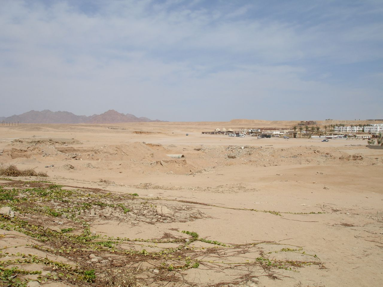 Hotel-Desert.jpg