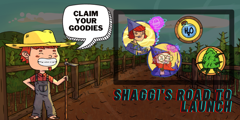 shaggis_road_to_launch.png