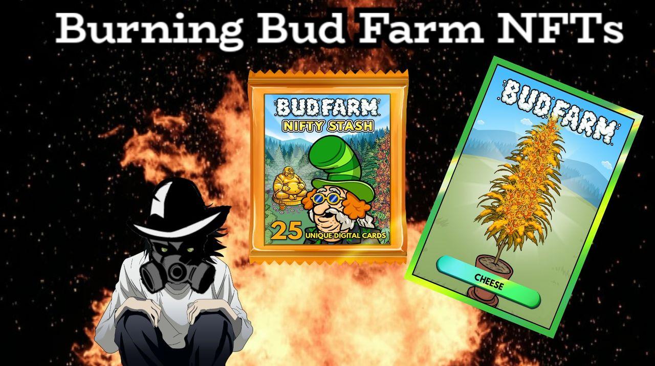 bud_burning_title_card.jpg