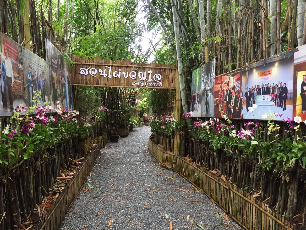 kwanjai_bamboo_garden7.jpg