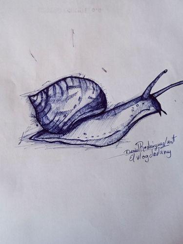 Dibujo un caracol [Eng/Spa]