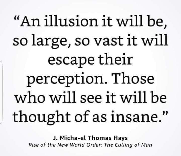 Illusion-photo_2021-01-06_03-46-29.jpg