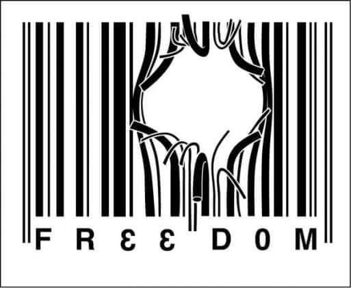 Freedom-photo_2021-06-02_17-41-40.jpg