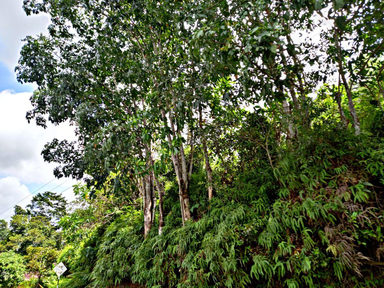 PicsArt_09-23-11.43.05.jpg
