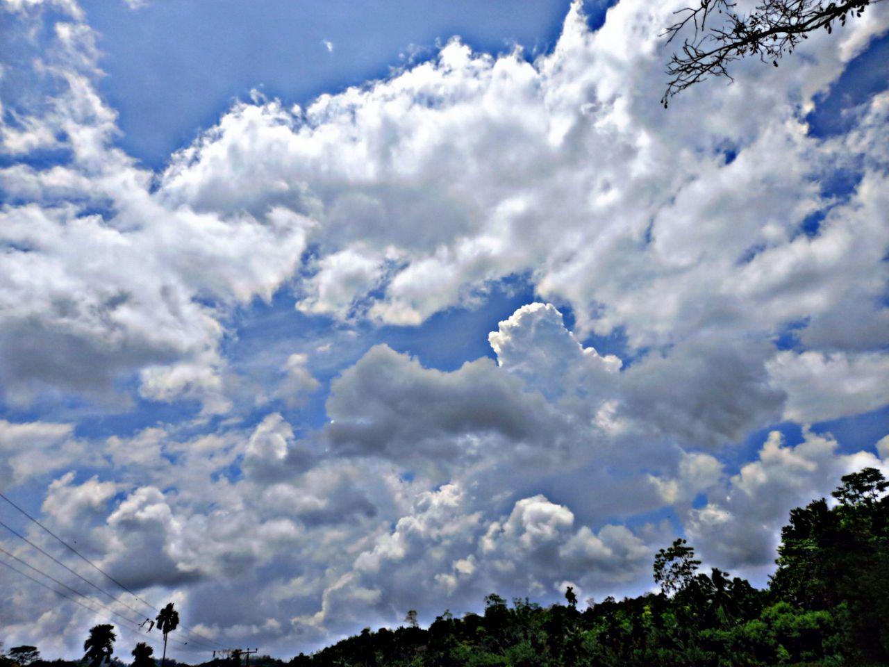 PicsArt_09-23-11.52.55.jpg