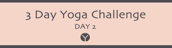 Yoga day 2 | Breath