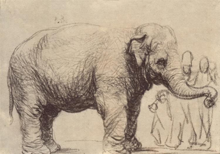 an-elephant-1637.jpg!Large.jpg