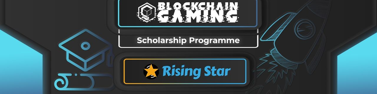 Rising Star Scholarship Banner.jpg