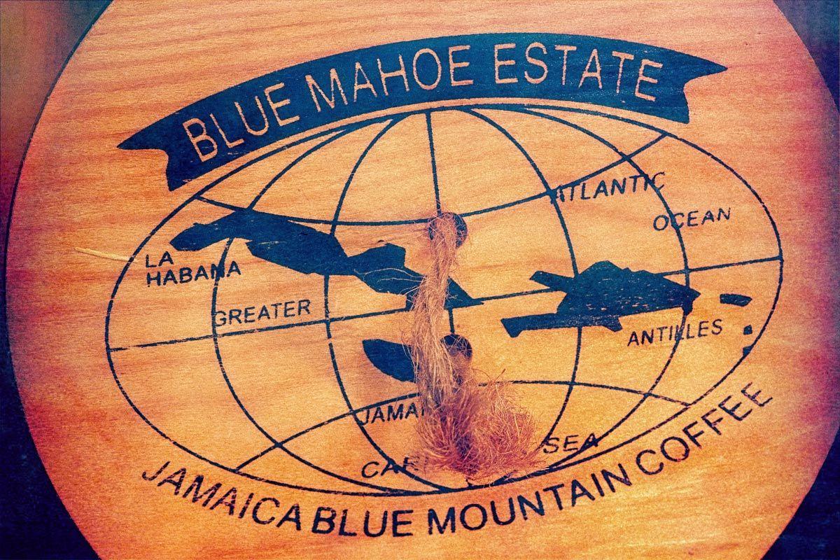 Jamaican-Blue-Mountain-coffee (1).jpg