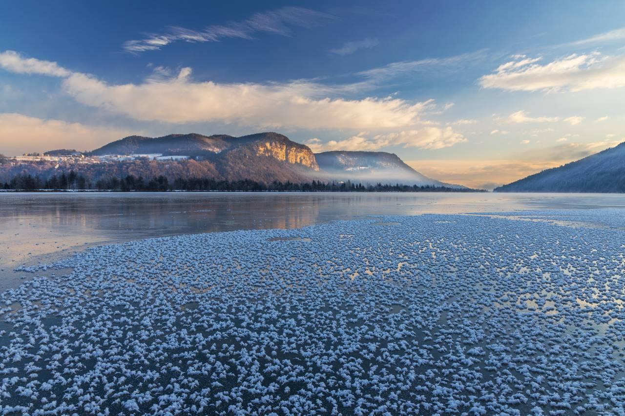 Frozen Morning at the Reservoir