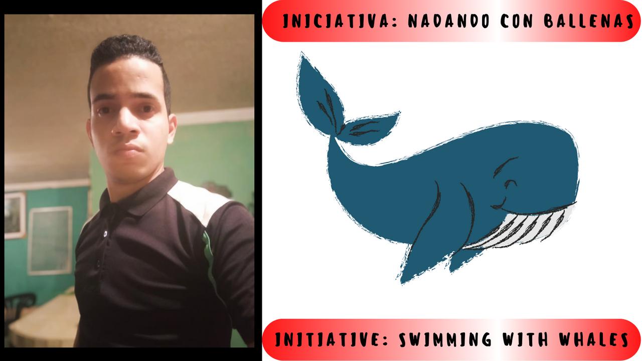 Iniciativa Nadando con ballenas.png
