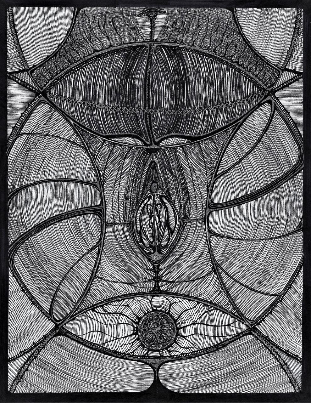 Labiotica c.jpg