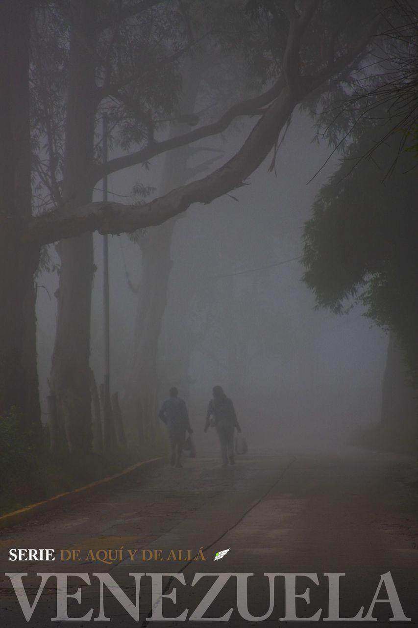 LA GRITA, PÁRAMO DEL ZUMBADOR-COLLAGE ESPAÑOL, EDIT.jpg