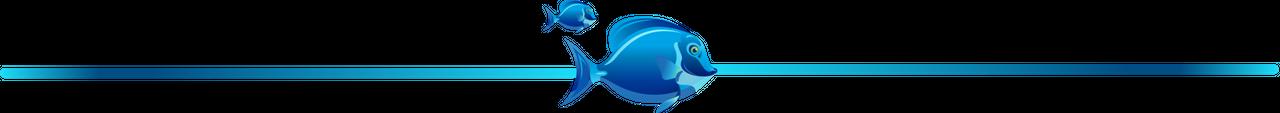 Aquatic Sentinels separador.png