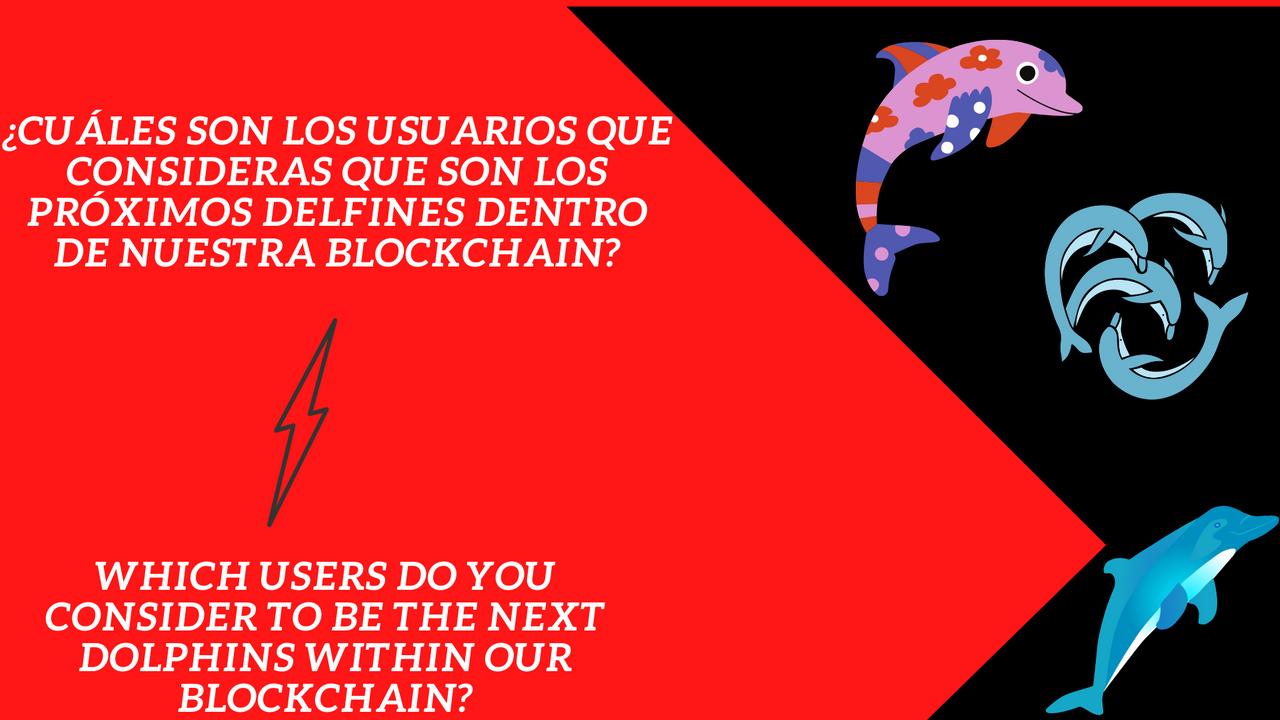 ¿Cuáles son los usuarios que consideras que son los próximos delfines dentro de nuestra blockchain.png