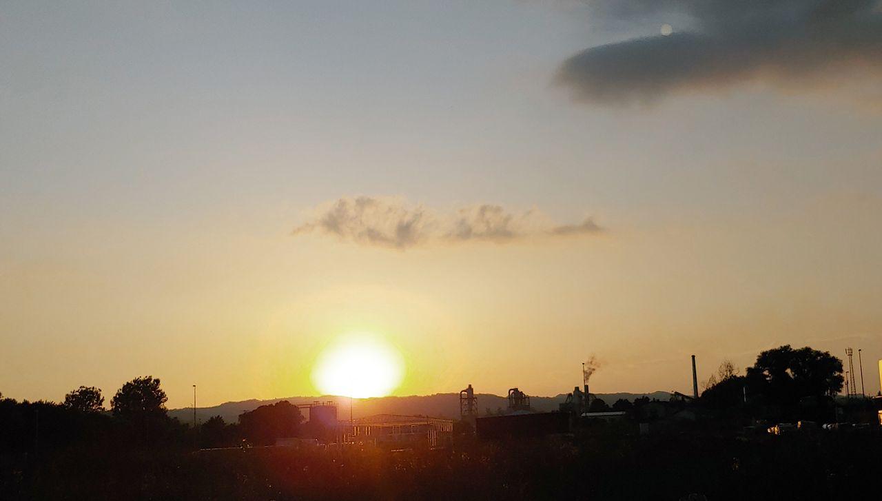suns14.jpg