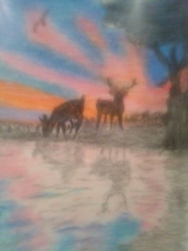 Wild sunset (drawing)