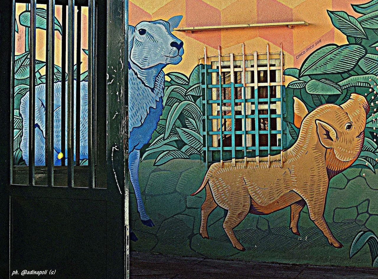 muro_fattoria_ter.jpg