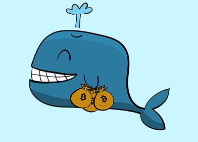 whalecryptomoney.png