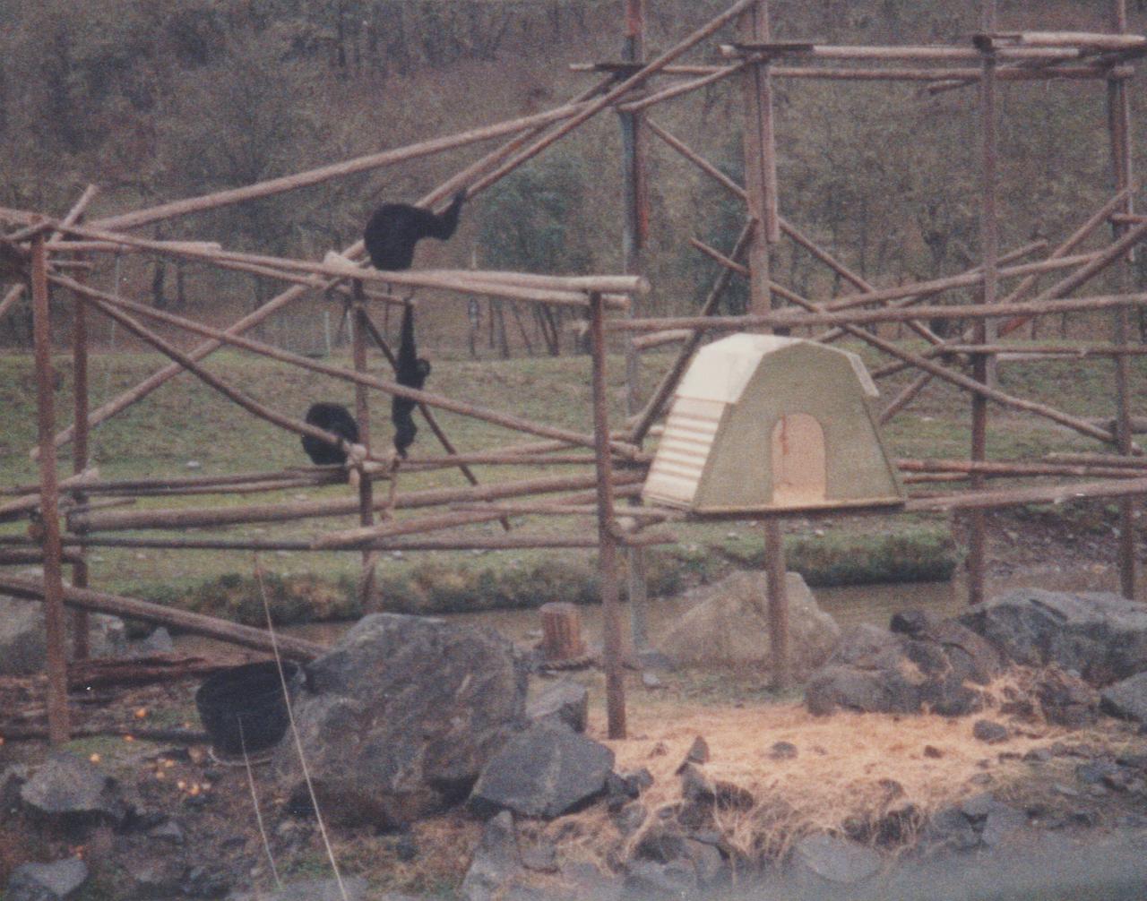 1992-12-26 - Saturday - Wildlife Safari Trip, Marilyn, Crystal-15.png