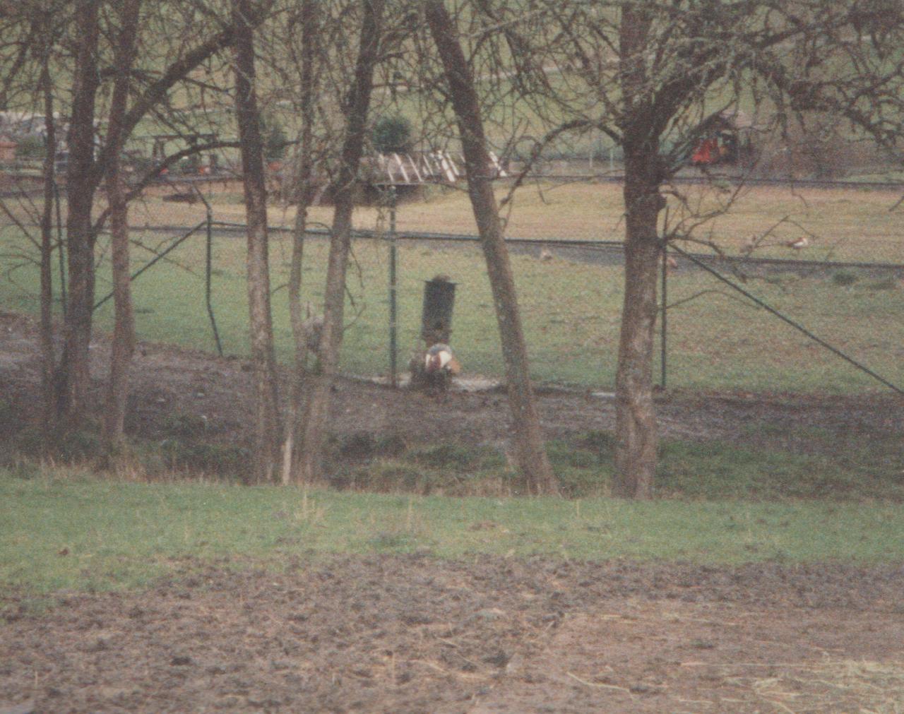1992-12-26 - Saturday - Wildlife Safari Trip, Marilyn, Crystal-06.png