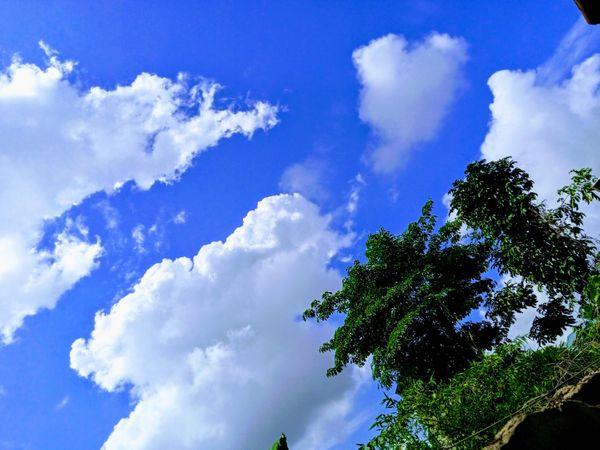 Photography ~ I Still Love The Sky