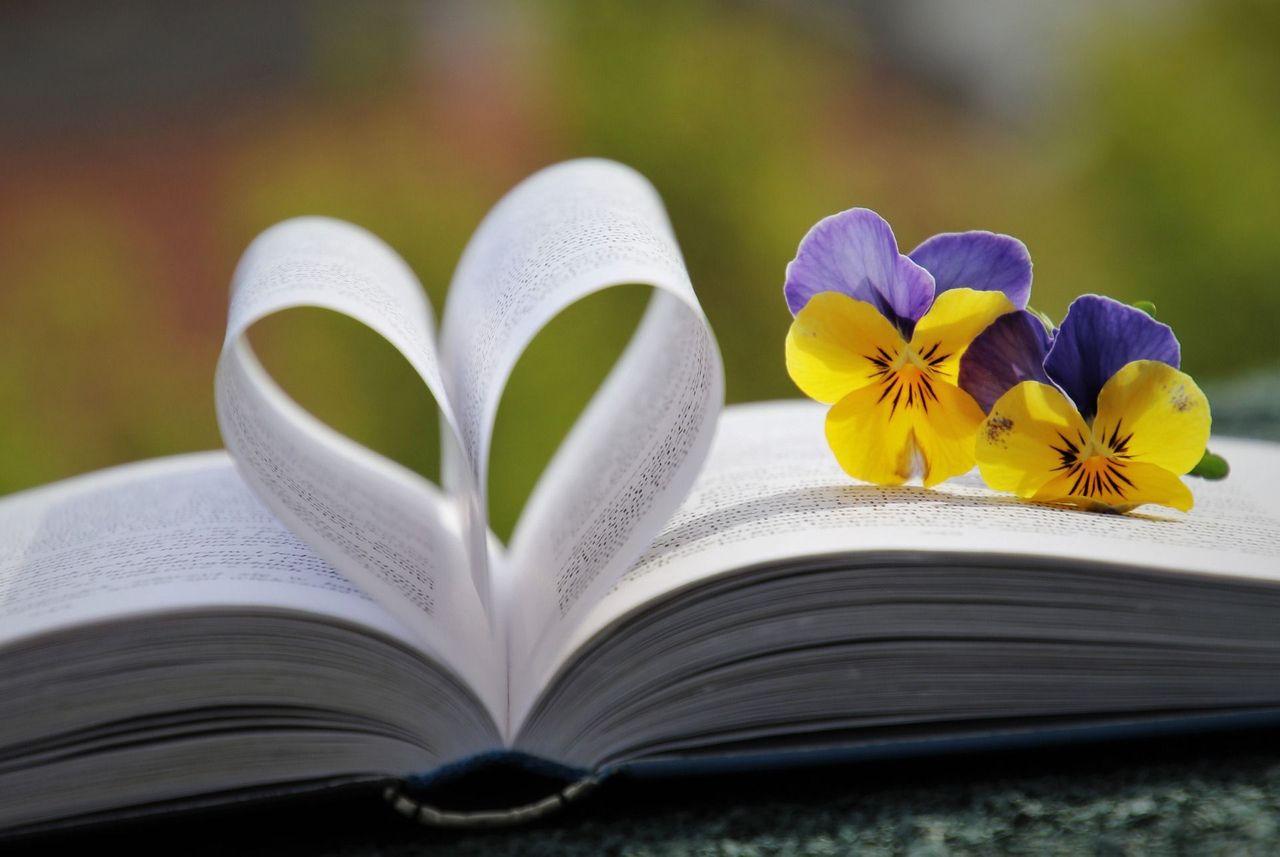 book-6214216_1920.jpg