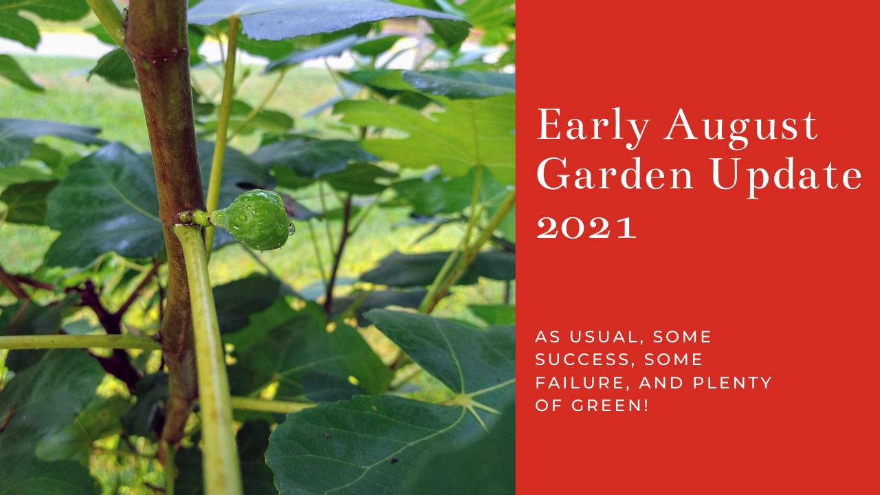 August Garden Update 2021.png