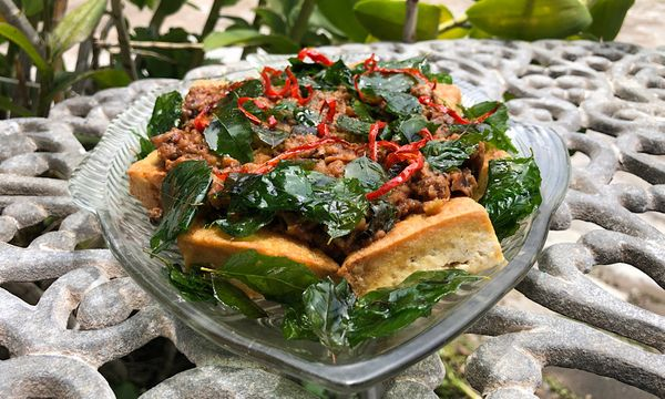 🌿 Fried Tulsi Sleeping On Bed Of Tofu 🛏️ Vegan Recipe 👩‍🍳