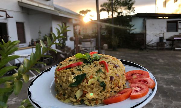 🌿🥕 Tulsi Fried Rice At Sunset 🌅 A Vegan Recipe 🍚