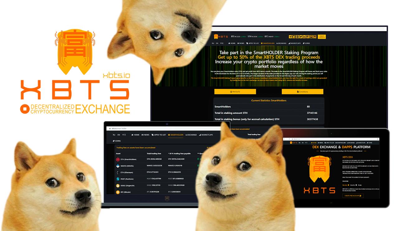 doge_coin_smartholder.png