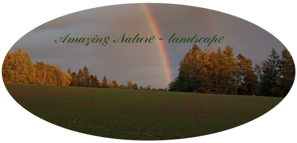 Amazing Nature geography Curation Report June 2021 # 2