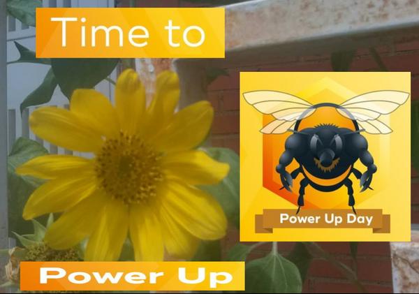 Hive Power Up Day.  Creciendo juntos. #HPUD.