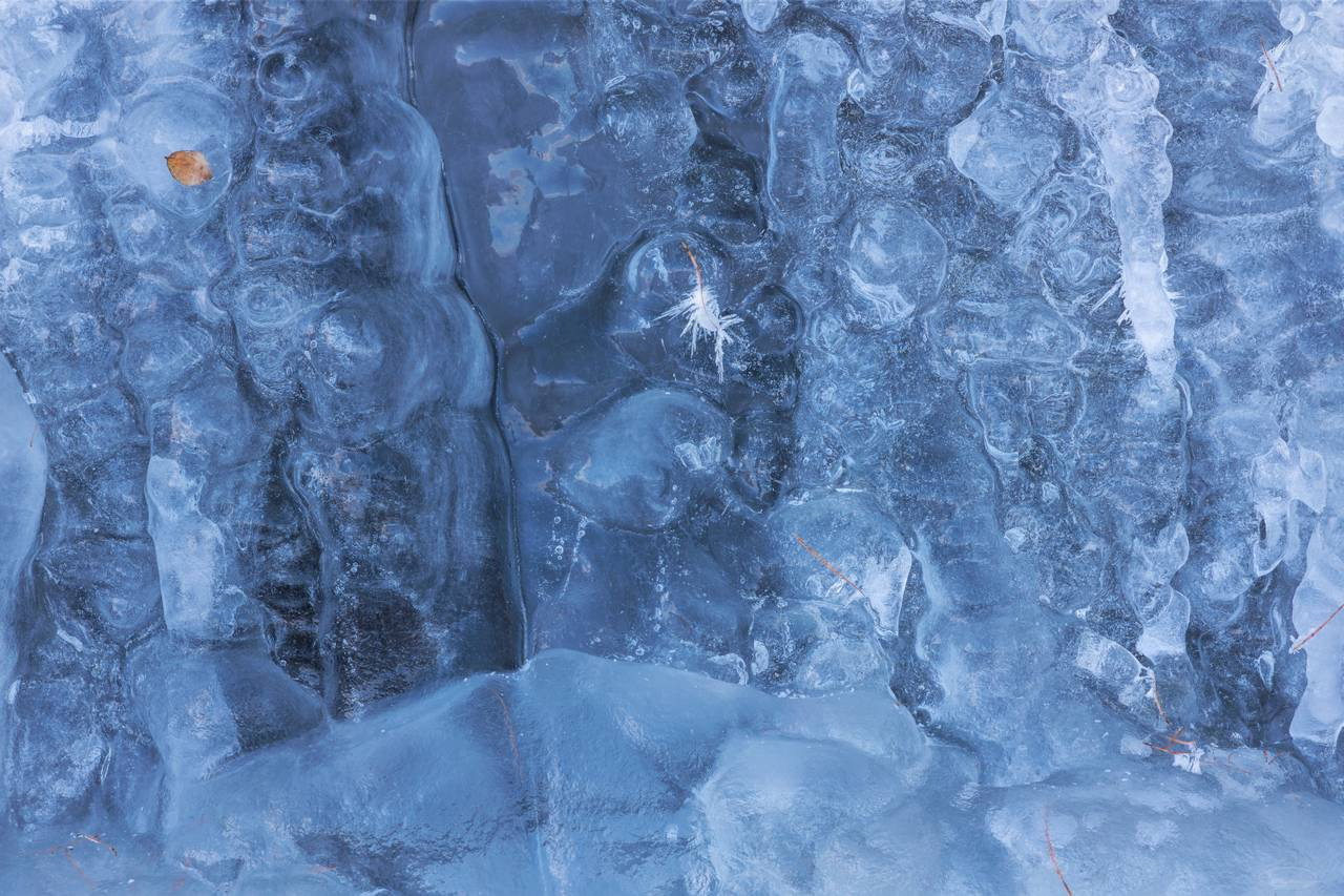 Small Waterfall behind a blue Ice Curtain - closer look - frozen Leaf and Pine Needles