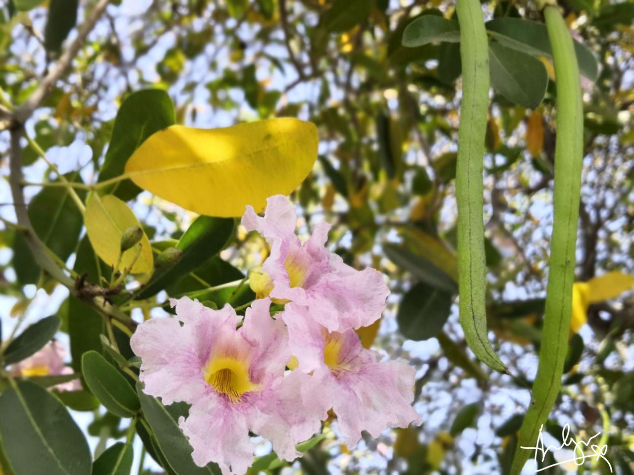 PicsArt_03-30-12.53.57.jpg