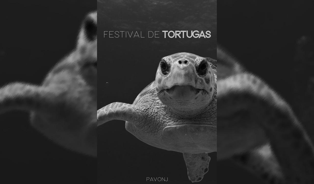Festival de Tortugas.png
