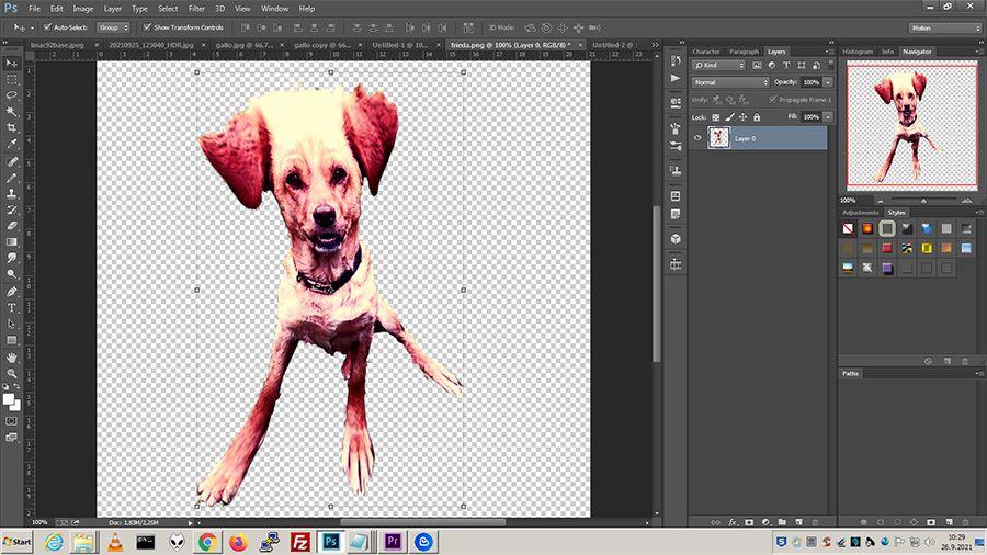 lmac92_work6.jpg