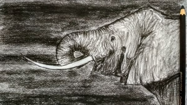 With a long Nose| Charcoal Drawing