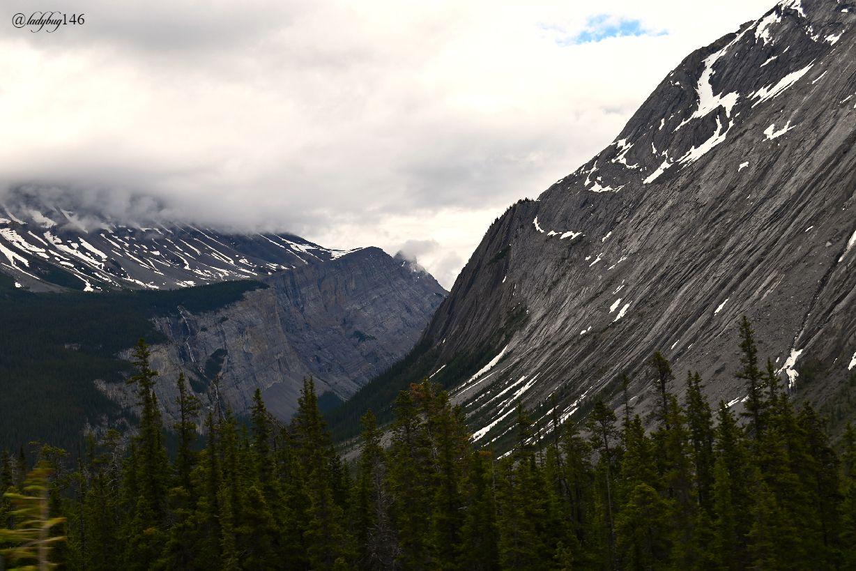 icefield parkway (6).jpg