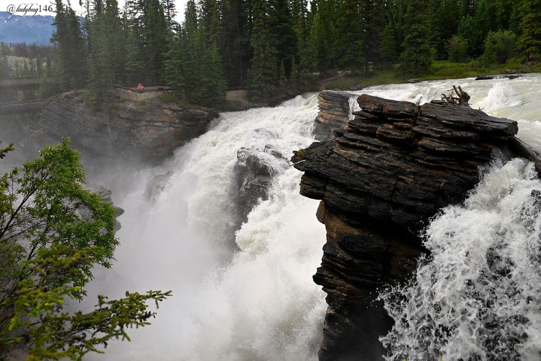 athabasca falls (10).jpg