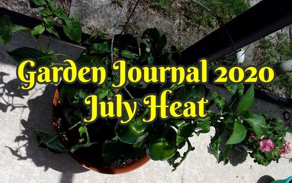 Garden Journal 2020 | July Heat