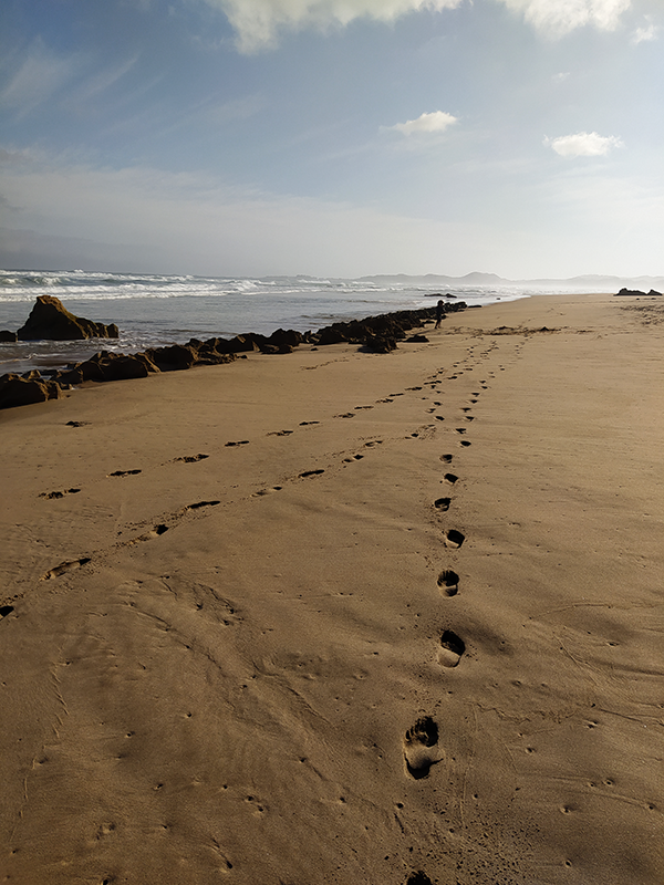 Footprints of the day.png