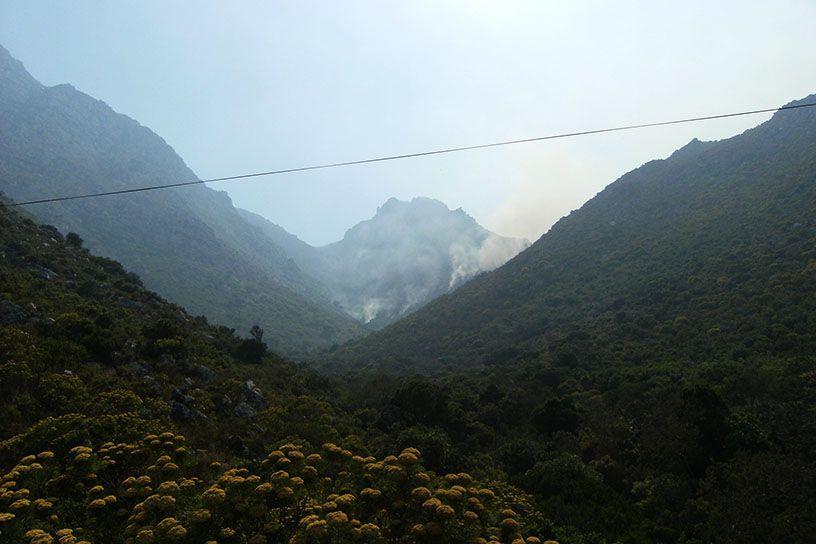 Valley on Fire.jpg